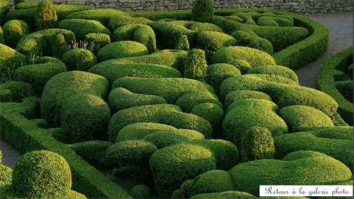 fotos jardins modernos:Fotos De Jardins Modernos 1 Jpg Wallpaper Pictures to pin on Pinterest